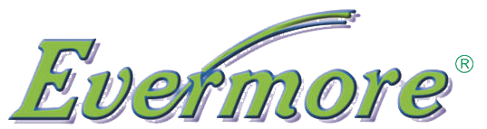 Логотип бренда evermore